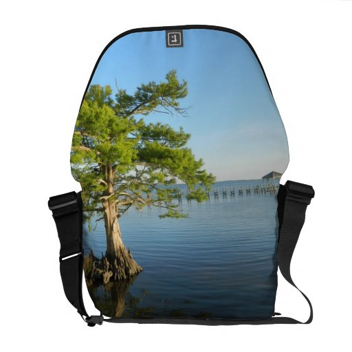 Cypress Tree on The Outer Banks Messenger Bag