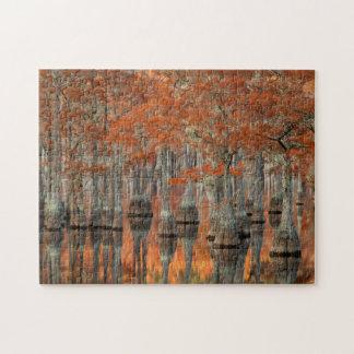 Cypress Trees | George Smith State Park, Georgia Jigsaw Puzzle