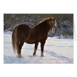 Czech, Horse in the snow christmas card