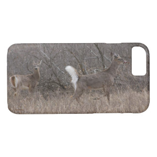 D0001 White-tailed Deer Iphone 8/7 phone case