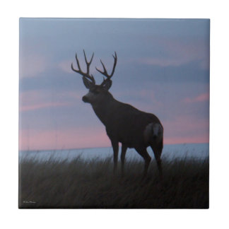 D0003 Mule Deer Sunrise Buck Tile