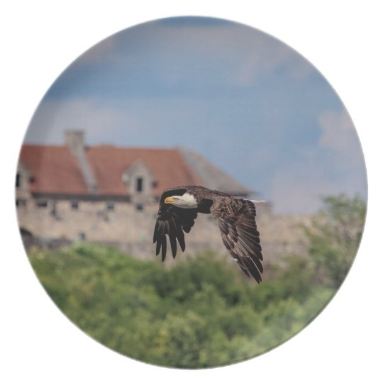 d Eagle passing Fort Ticonderoga Plate