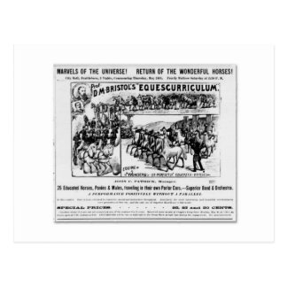 D. M. Bristol's Equescurriculum Ad Postcard