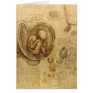da Vinci - Embryo Sketch Card