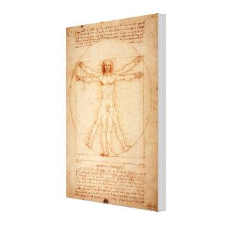 Da Vinci's Vitruvian Man (1487) Canvas Print