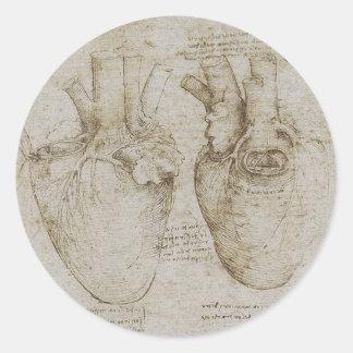 Da Vinci's Human Heart Anatomy Sketches Classic Round Sticker