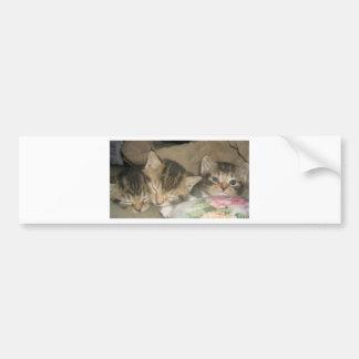 DaBoys Bumper Sticker