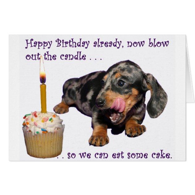 Dachshund Birthday Gifts - Dachshund Birthday Gift Ideas on Zazzle.ca