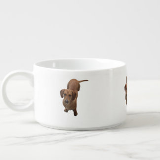 dachshund bowl