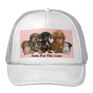 Dachshund Breast Cancer Hat