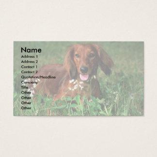 Dachshund Business Card