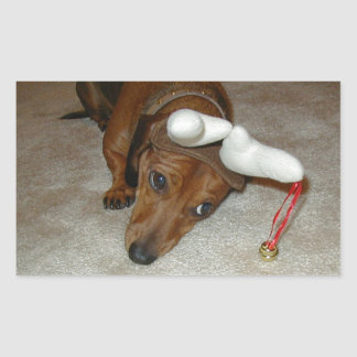 Dachshund Christmas Sticker- Reluctant Reindeer