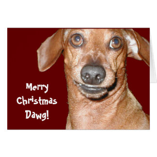 Dachshund Dawg Christmas Card