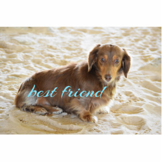 Dachshund dog acrylic photo statuettes key chain photo sculpture keychain