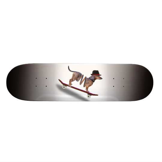 Dachshund Dog Skateboarder Skateboards