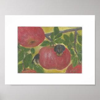 Dachshund dog worm in red apple tree Doxie Weenie Poster