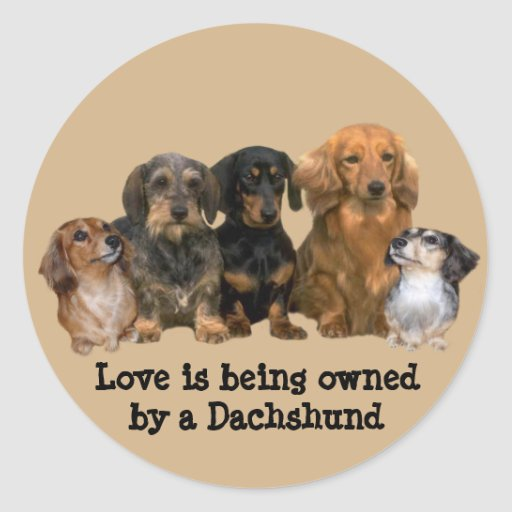 Dachshund Gang Sticker
