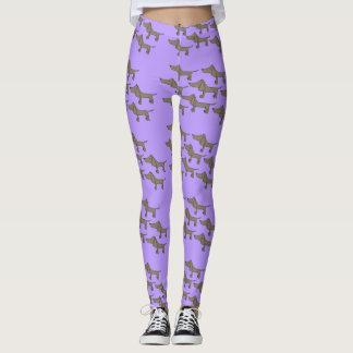 Dachshund in purple leggings