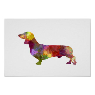 Dachshund in watercolor 2 poster