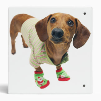 Dachshund - merry christmas - cute dog 3 ring binders
