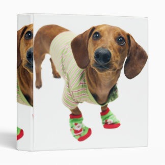 Dachshund - merry christmas - cute dog binders