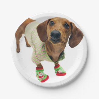 Dachshund - merry christmas - cute dog paper plate