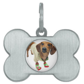 Dachshund - merry christmas - cute dog pet name tag