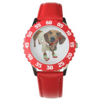 Dachshund - merry christmas - cute dog watch
