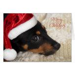 Dachshund Merry Christmas Greeting Cards
