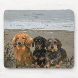 Dachshund On Beach Mousepad