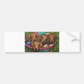 Dachshund Puppies Bumper Sticker