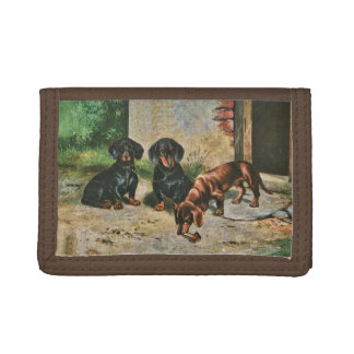 Dachshund Puppies wallet