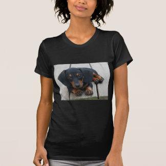 Dachshund Puppy Black T Shirts