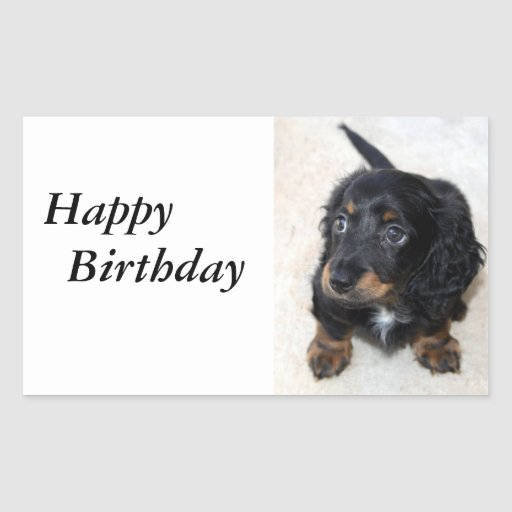 Dachshund puppy cute cute beautiful photo, gift rectangular sticker