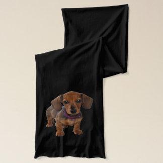 Dachshund Puppy - Daschsies Scarf