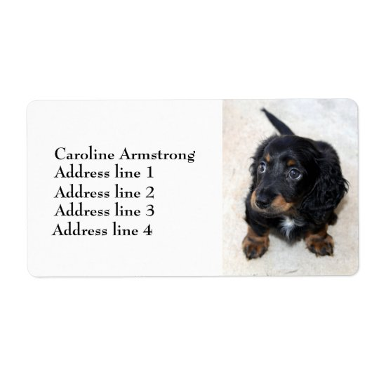 Dachshund puppy dog cute custom address labels