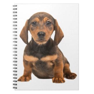 Dachshund Puppy Dog - Love Puppies Spiral Notebook