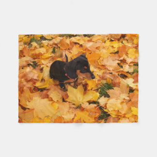 Dachshund puppy fleece blanket