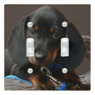 Dachshund puppy light switch cover