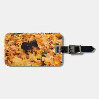 Dachshund puppy luggage tag