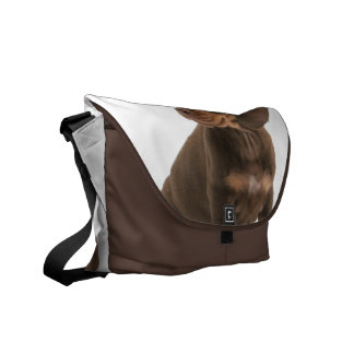Dachshund Puppy Messenger Bag