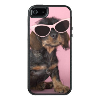 Dachshund puppy wearing sunglasses OtterBox iPhone 5/5s/SE case