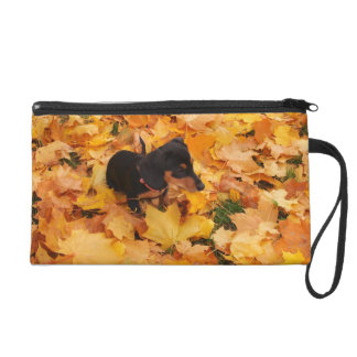 Dachshund puppy wristlet purses