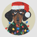 Dachshund Santa Tangled In Christmas Lights Round Stickers