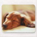 Dachshund sleeping mouse pad
