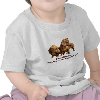 Dachshund Smoothie Toddler Unisex T-Shirt