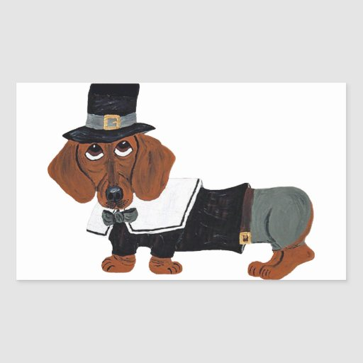 Dachshund Thanksgviving Pilgrim Rectangle Stickers