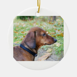 dachshund-wild boar ceramic ornament
