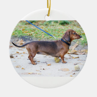 dachshund-wild boar full ceramic ornament