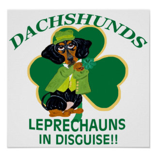 Dachshunds Are Leprechauns In Disguise Poster